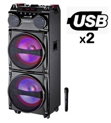 Parlante Eversound EVJ-8200 c/doble usb